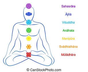 sanskrit, beskrivning, chakras, man