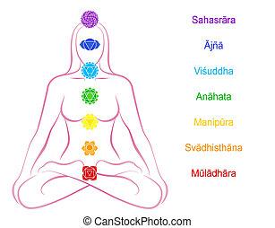 sanskrit, femme, description, chakras