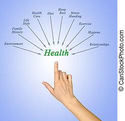 santé, composants