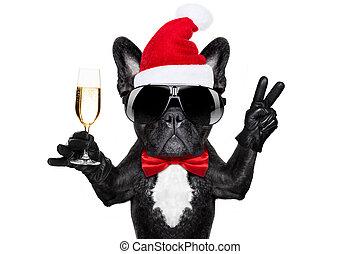 santa, 犬, クリスマス, claus