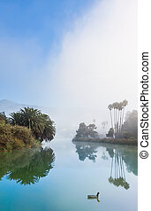 The Santa Barbara bird refuge lagoon with an incoming fog bank.