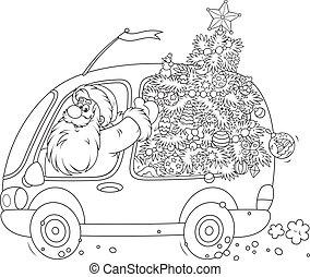 Santa carries a Christmas tree - Santa Claus carrying a...