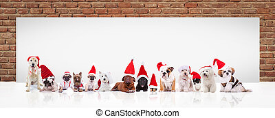 santa claus dogs in front of a big blank billboard