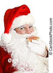 Santa Claus Eating Christmas Cookie