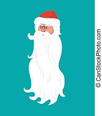 Santa Claus face isolated. grandfather head with white beard