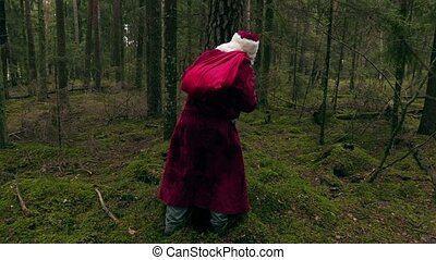 Santa Claus hiding behind the tree