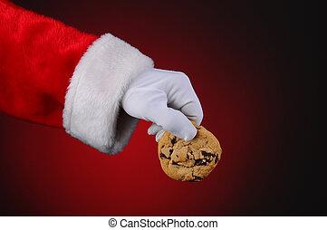 Santa Claus Holding Cookie