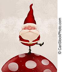 Santa Claus on fungus