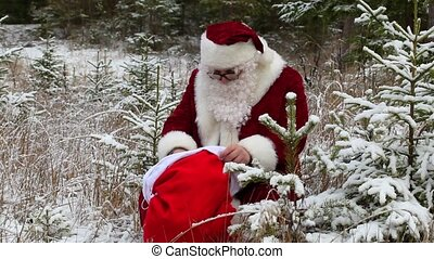Santa Claus with gift bag in snowy forest