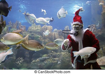 Santa Clause Feeding Fishes - Santa Clause feeding fishes at...