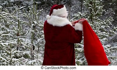 Santa Clause with gift bag in the snowy woods