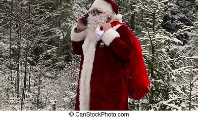 Santa Clause with gift bag talking on smartphone in the...