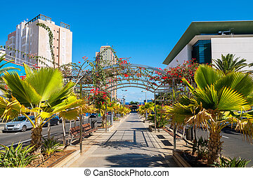 Santa Cruz de Tenerife. Canary Islands, Spain - Avenida...