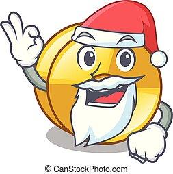 Santa cyamblas miniature in the cartoon shape