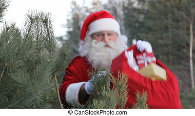 Santa in forest - Santa waves at camera holding his sack of...