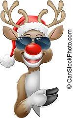 santa, noël, renne, lunettes soleil, chapeau, signe