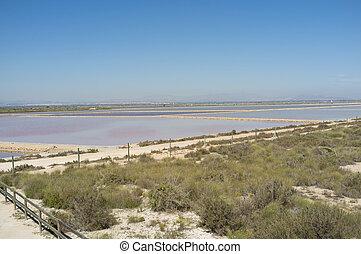 Santa Pola salt marsh - Pools of Santa Pola salt marsh under...