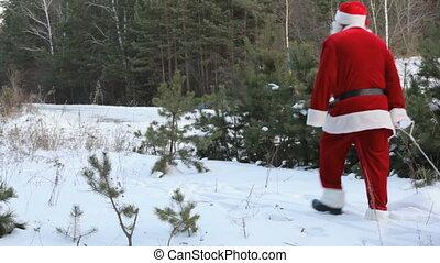 Santa pulling sled