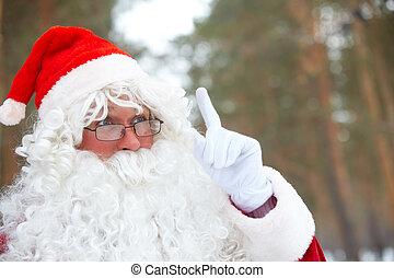 Santa  - Portrait of Santa Claus outdoors