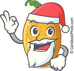 Santa tasty honeydew melon isolated on mascot
