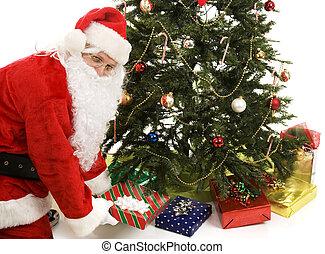 Santa Under the Tree - Santa Claus puts presents under the...