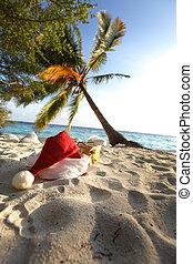 santa vacation - santa hat on sand under palm