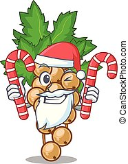 Santa with candy carrunt white above the mascot bowl vector...