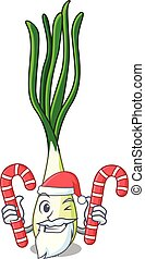 Santa with candy fresh scallion isolated on the mascot...