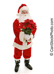 Santa With Poinsettias Full Body