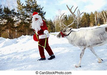 Santa?s pet - Santa Claus walking in the wood and leading...