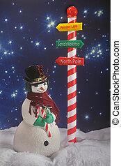 Santa\'s Snowman