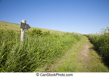 rural path and wood signpost with public Middle Ages symbol of Camino de Santiago the biggest Christian pilgrimage route this in Asturias Spain Europe