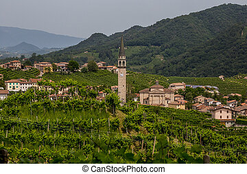 Santo Stefano village surrounded by vineyards