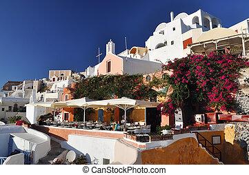 santorini, görögország, kedves, kert, oia