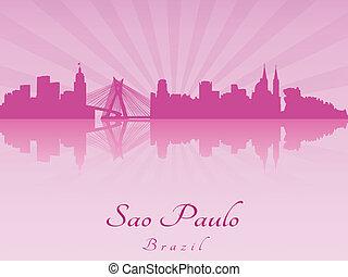Sao Paulo skyline in purple radiant orchid