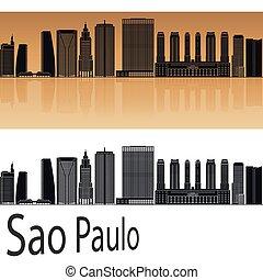 Sao Paulo V2 skyline