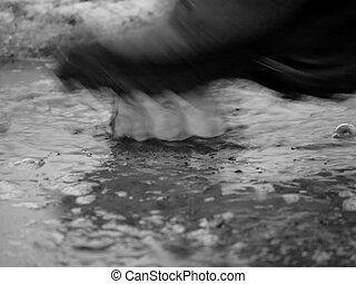sapato, em, água