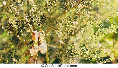 sapatos, enforcar, árvore, noiva, ramo, casório, azeitona