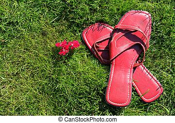 sapatos vermelhos, ligado, capim