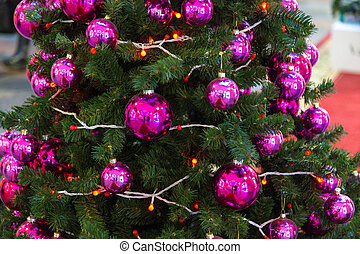 sapin, branches, décorations noël