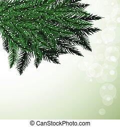sapin, branches, flocons neige, coloré, arbre, arrière-plan.