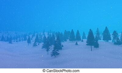 sapin, montagne, hiver, intempérie, forêt, 4k