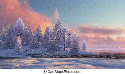 sapin, neigeux, lac gelé, coucher soleil, forêt, 4k