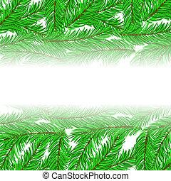 sapin, vert, branches, modèle