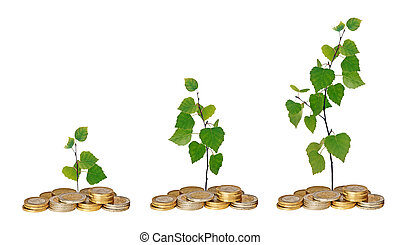 Saplings growing from coins