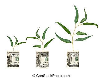 saplings growing from dollar bill