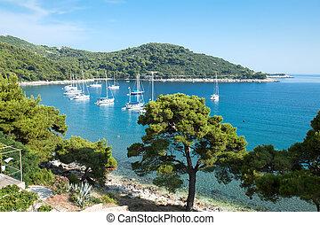 saplunara, panoramisch, harbor., kroatië, aanzicht