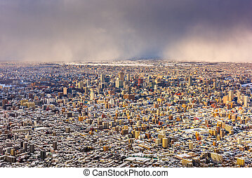 Sapporo, Japan Aerial Cityscape