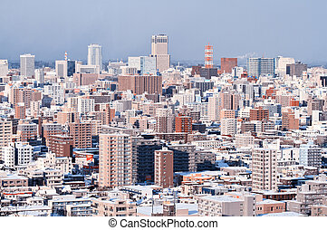 Sapporo, the capital of Hokkaido Prefecture, Japan.