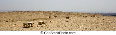saqqara, 砂漠